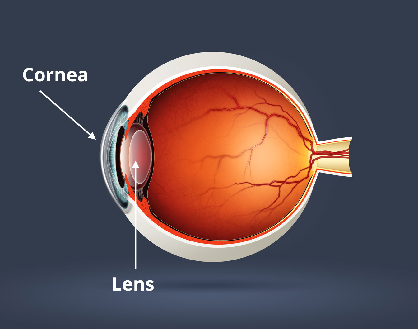 ef11f2075e1 Here s What You Need To Know About Astigmatism – Youreyewearguide.com
